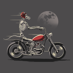 Baboon Biker